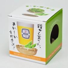 """Kit à faire pousser """" Edamame Japonais """""""