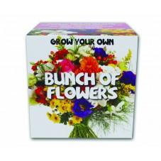 """Kit à faire pousser """" Bouquet de fleurs """""""