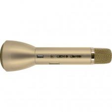 Micro haut-parleur karaoké USB