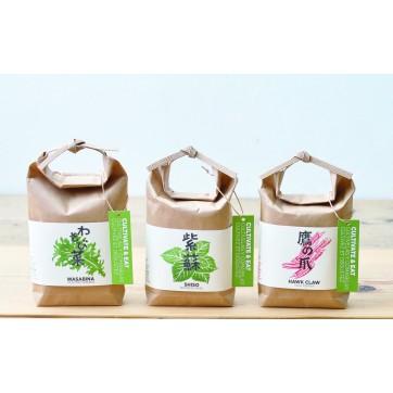 """Piments japonais à faire pousser """" Sachet de riz traditionnel """""""