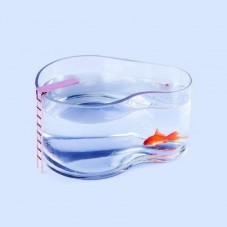 """Aquarium """"Piscine"""""""